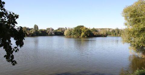 L'étang de Carouge
